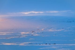 Blue sunset #1