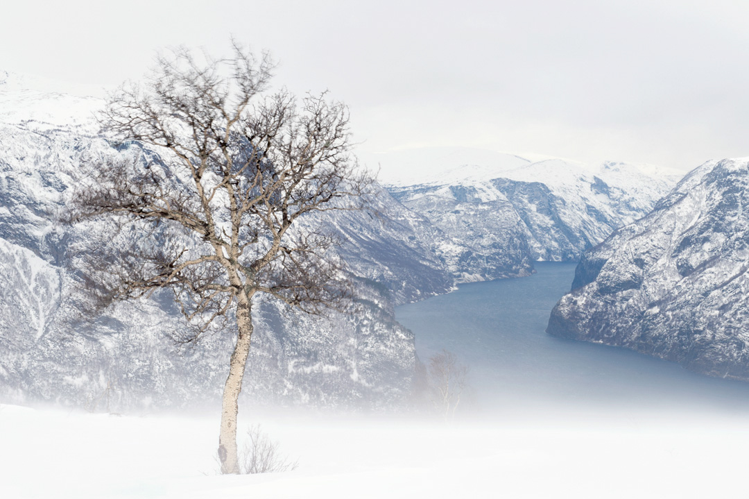Wind above the fjord
